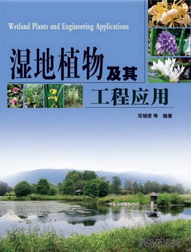 Wetland Plants and Engineering Applications