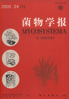 Mycosystema (Acta Mycologica Sinica)Vol.24  No.1  22February,2005