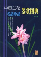 Orchid Appreciation Series-Atlas of China's New Brand and Rare Orchids