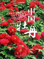 Tree Peony of China
