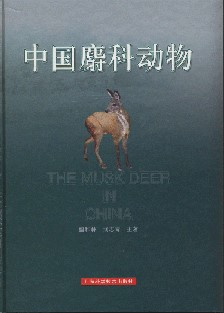 The Musk Deer in China
