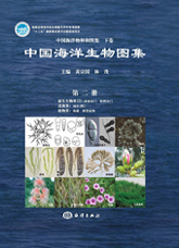 An Illustrated Guide To Species in China's Seas  (Vol.2)   - Protista (2): Radiolaria, Granuloreticulosa; Fungi : Lichen; Plantae: Seaweeds, Trachephyta Plants