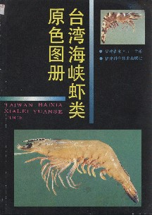 Atlas of Shrimps in Taiwan Strait