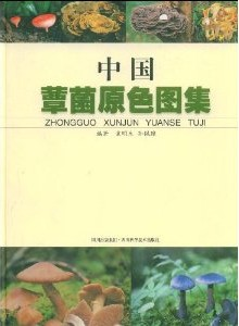 The Pictorial Book of Mushrooms of China