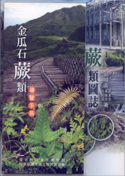 Illustration of Ferns in Jinguashi Area, Taiwan