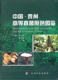 Colored Illustration of Higher Fungi from Guizhou in China