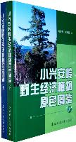 Atlas of Wild Economic Plants in Xiao Hinggan Ling, China