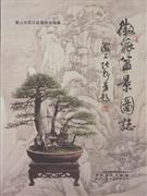 The Atlas of Huizhou's Bonsai