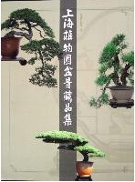 The Collections of Miniascape Masterpieces in Shanghai Botanical Garden