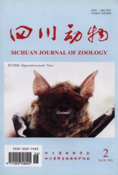 Sichuan Journal of Zoology (Vol.20, No.2, 2001)