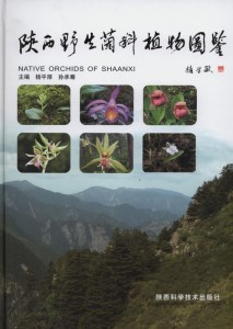 Native Orchids of Shaanxi