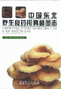 Illustrations of Edible and Medicinal Fungi in Northeastern China