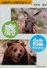 Wildlife Resources of Tibetan Series(1)-Musk Deer and Bear