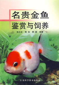 The Appreciation and Raising of Precious Goldfish