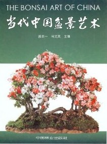 The Bonsai Art of China