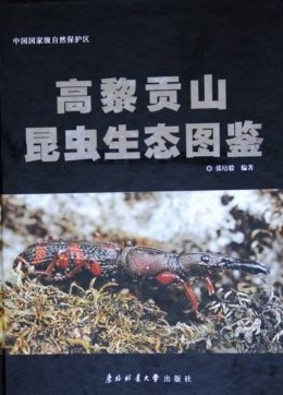 Ecological Photograph Handbook of Insects in Gaoligongshan