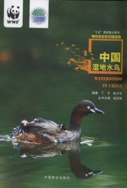 Waterbirds in China