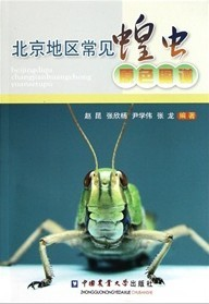 Colour Atlas of Common Grasshoppers and Locusts in Beijing