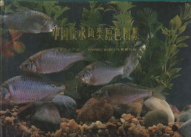 The Freshwater Fishes of China in Coloured Illustrations  Vol.3