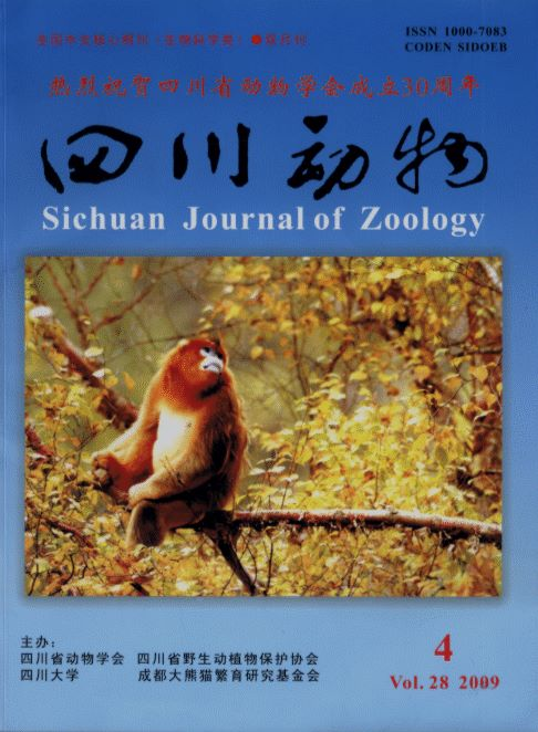 Sichuan Journal of Zoology (Vol.28, No.4, 2009)