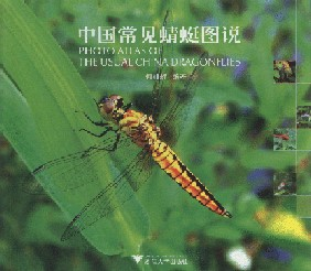 Photo Atlas of the Usual China Dragonflies (Ebook)