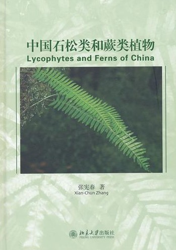 Lycophytes and Ferns of China