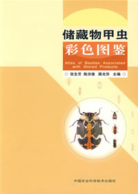 Atlas of Beetles Associated with Stored Products