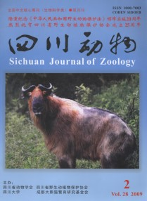 Sichuan Journal of Zoology (Vol.28, No.2, 2009)