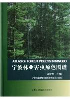Atlas of Forest Insects in Ningbo