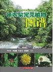 Illustrations of Common Plants in Shennongjia