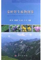 Illustrated Handbook of Wild Plants in Qinling Mountains