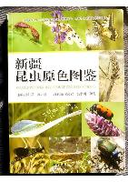 Coloured Pictorial Handbook of Insects in Xinjiang