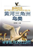 Birds of the Yellow River Delta