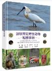 A Photographic Guide to the Common Wildlife of Shenzhen