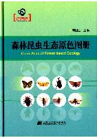 Color Atlas of Forest Insect Ecology