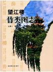 Atlas of Bamboo in Wangjianglou