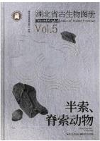Paleontological Atlas of Hubei Province Vol.5 Hemichordata, Chordata
