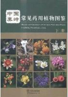Illustrated Handbook of Common Medicinal Plants in Qinling Mountains,China (Vol.2)