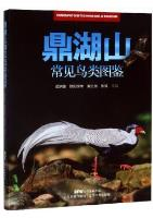 Photographic Guide to Common Birds of Dinghushan