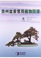 Atlas of Common Bonsai Plants in Guizhou