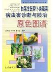Original Color Atlas of Diagnosis and Control for Pests and Diseases of Chinese Cabbage and Carrot Vegetables