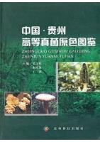 Colored Atlas of Higher Fungi from Guizhou in China (Ebook, PDF)