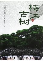 The Ancient Trees in Meijiang