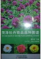 Pictorial Record of Heze Tree Peony Commercial Cultivars