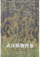 Illustrated Handbook Of Plants In Wuhan