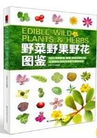 Edible Wild Plants & Herbs
