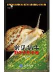 A Photographic Guide to Land Snails of China