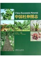 China Eucommia Pictorial