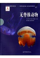 Series of the National Zoological Museum of China for Wildlife Ecology and Conservation:Invertebrates
