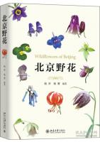 Wildflowers of Beijing